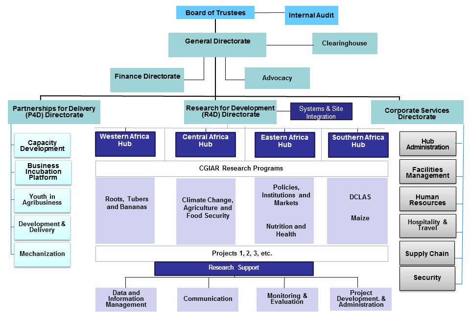 Iita Organogram
