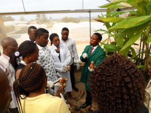 Picture of Joshua, a n IITA Youth Agripreneur (wearing a green lab coat), explaining about the rapid propagation technique for banana and plantain to young visitors.