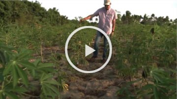 Screen grab of IITA Documentary trailer (The Visionaries) video