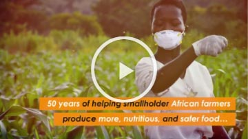 Screen grab of '50 years of improving lives of farm families in Africa' video