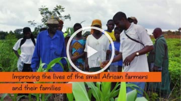 Screen grab of '50 years of adding value to African agriculture' video