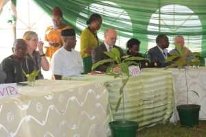 Picture of IITA Management and dignitaries during the opening program of the Forest Unit Open Day.