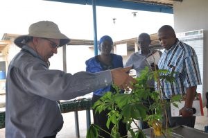 Picture of Peter Kulakow with visitors at Cassava Breeding Unit.