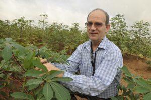 Picture of Peter Kulakow, Cassava Breeder / Geneticist