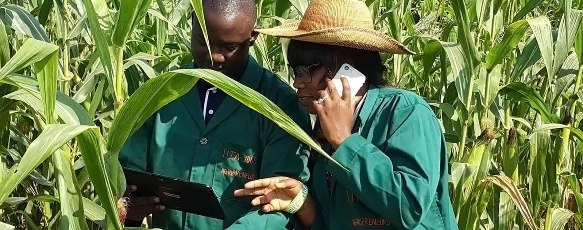 Agribusiness made easy through the use of ICT