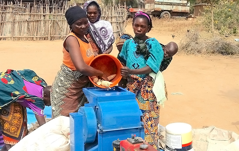 Rural women (Kongwa District, Tanzania) use a low-cost maize thresher run by a diesel engine. The technology reduces labor needs by 77% and frees 90% of time spent in manual shelling for other income-generating activities or household duties (Photo: C. Mutungi/IITA).