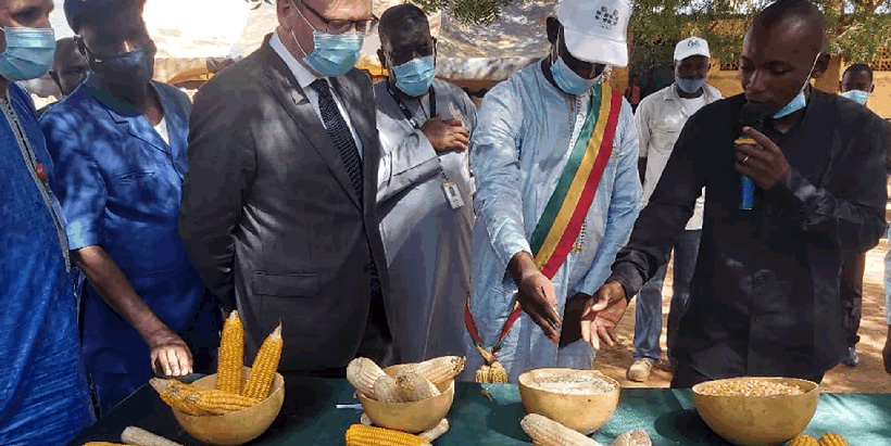Norwegian Ambassador Vegar Brynildsen and the Mayor of Mafeya looking at different varieties produced by Farmers through the CSAT project in the region of Koulikoro.