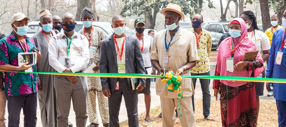 BASICS-II kicks off partnership to promote improved cassava varieties cultivation and consumption