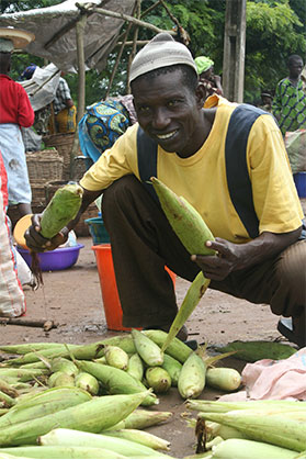 Crop innovation: Mitigating the impact of the climate crisis in Africa