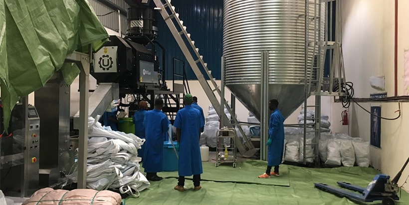 IITA signs Aflasafe manufacturing and distribution agreement in Mozambique