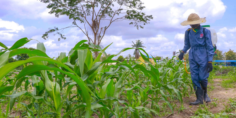 Determinants influencing youth engagement in agribusiness